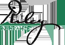 riley-insurance-agency-logo.v1467750901
